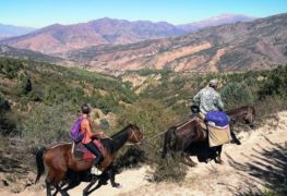 Horseback Riding Tour in Western Tien Shan Mountains 5 days