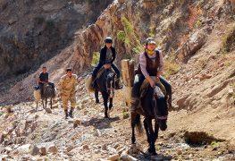 Nurata Mountains Tour